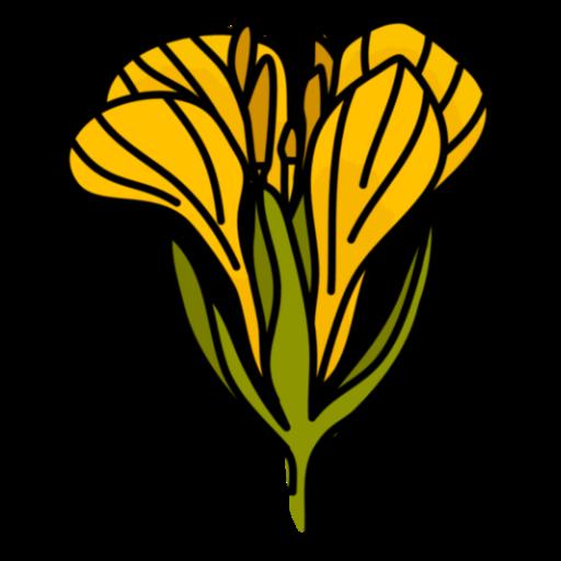 Rhonda Stoppe logo mustard flower